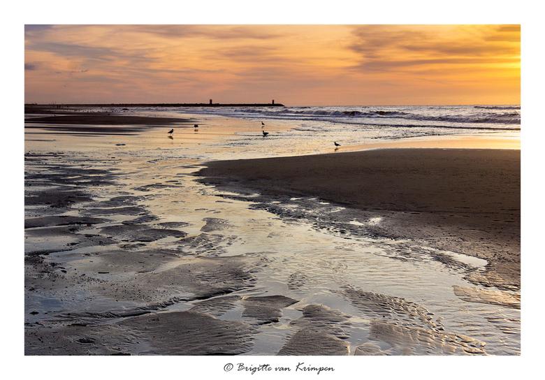 Northsea at sunset - Genieten aan het strand gisteravond met de ZOOM dag Scheveningen