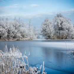 Winters Wit