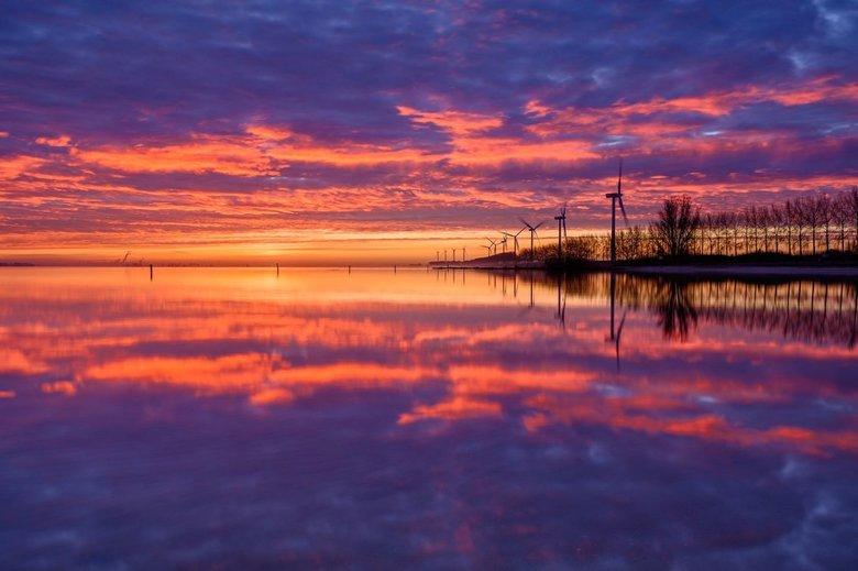 Pink - De perfecte spiegeling tijdens een mooie zonsopkomst aan het Haringvliet.