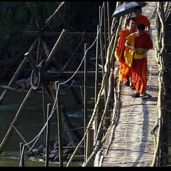 LAOS Bamboe loopbrug