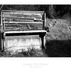 Lonely Old Piano