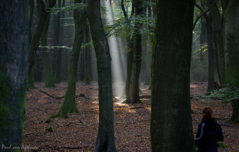 Magic Flashlight -