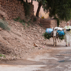 Maroc 40