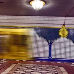 U Bahn macht seinen Weg entlang Blaue Bäume