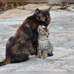 Moeder & Kind