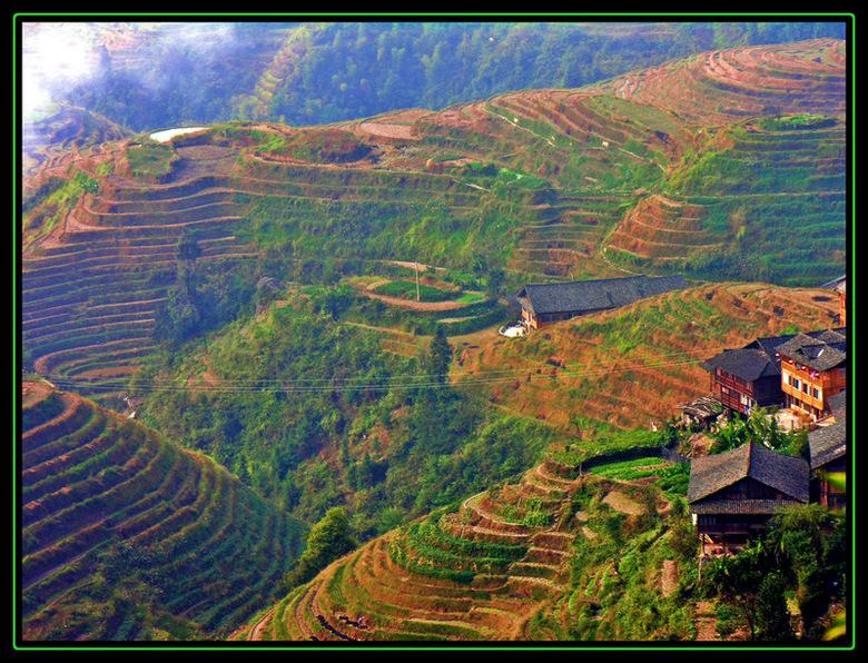 Long Ji - Het is 5 uur wandelen van 'Ping'an' naar 'Tian Tou' door en over de rijstterrassen. Jammer genoeg was de rijst al g