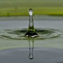 Waterdruppel