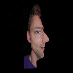 Optische Illusie