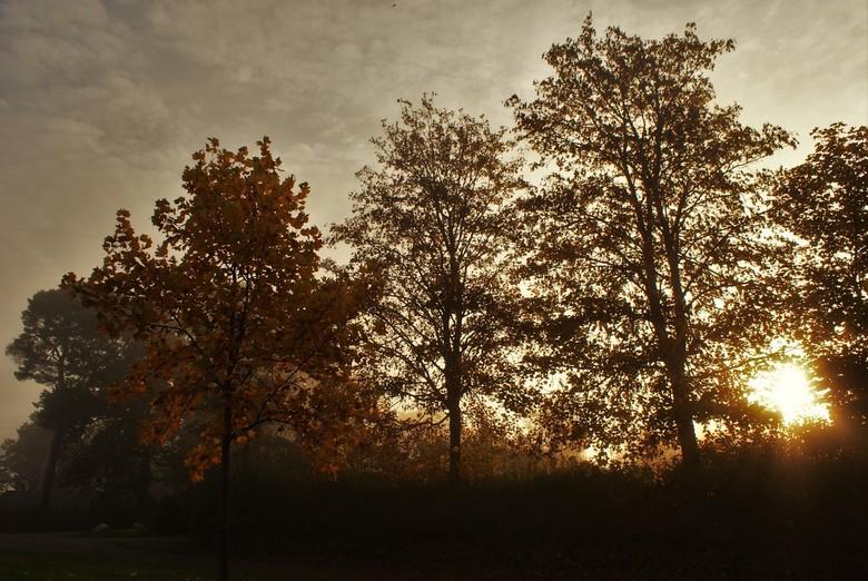 Guten Morgen. - koude en mooie zonsopkomst in Duitsland.