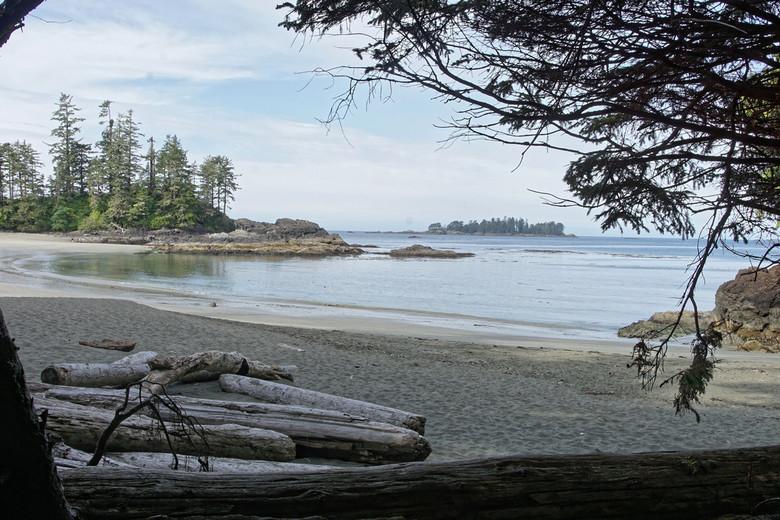 Moon Bay - Stukje kust nabij het gematigd regenwoud van Vancouver Island.