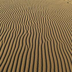 wind door het zand