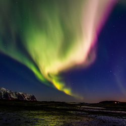 Noorderlicht/Lofoten