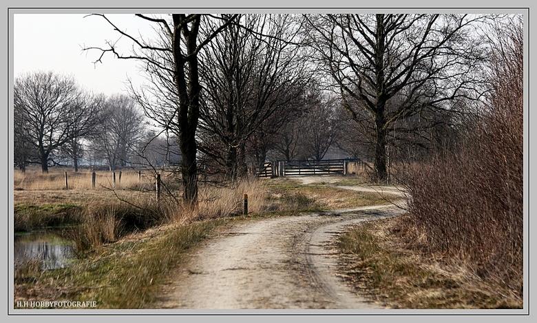 Bargerveen  - Bargerveen<br /> <br /> Natuur gebied Bargerveen<br /> <br /> <br /> <br /> Bedankt voor reactie vorige upload!<br />