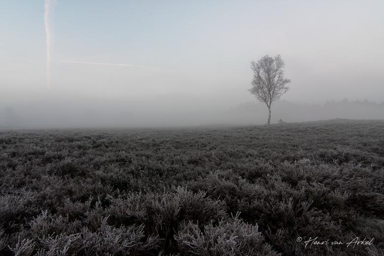 Renderklippen - Heerde - 4 november 2018 - Een koude zondagochtend in alle vroegte op de Renderklippen met mist en rijp.