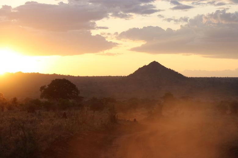 evening sun in Tanzania -