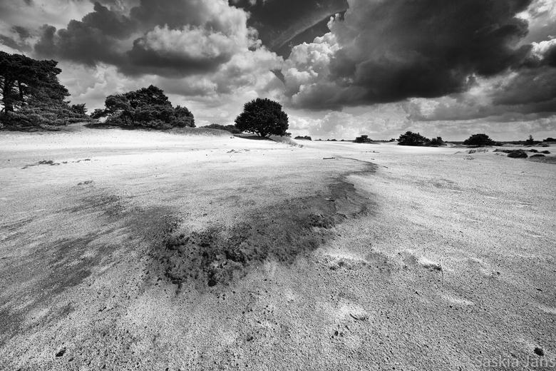 Elementen - Wind en zand hadden vandaag vrij spel...