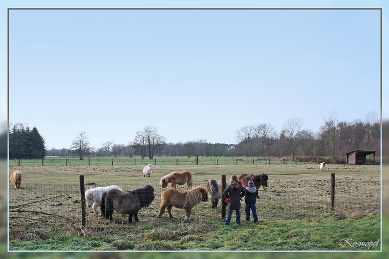 Dag paardjes, dag kindjes - Tja, we komen nu eenmaal voorbij die plek als we vertrekken voor de wandeling, dus ik kon niet anders dan nog maar eens mi