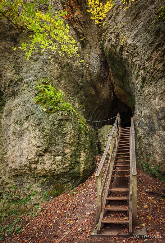 Thrill - Ben je fijn een wandeling aan het maken in een schitterend bos kom je opeens bij een trap. Er ontbrak een trede maar verder leek die stevig g