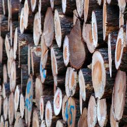 flinke bos hout voor de deur