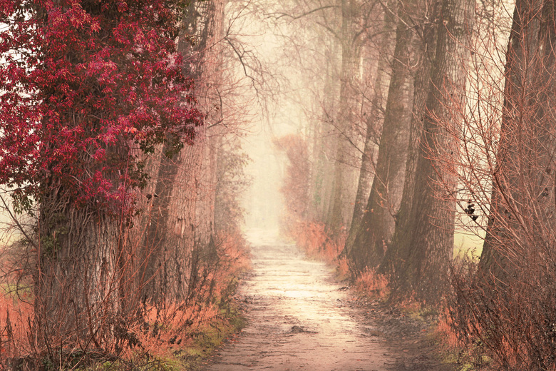 The old road -
