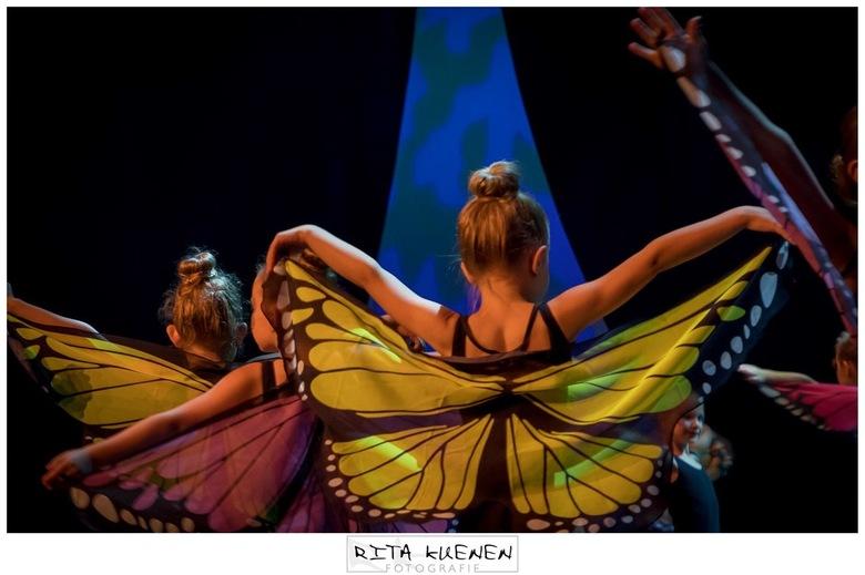 Butterfly - L E T 's . D A N C E . door . S E I Z O E N I A <br /> <br /> De foto heb mogen vastleggen tijdens de dansvoorstelling van Danshuis Venr