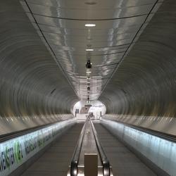 Tunnelvisie