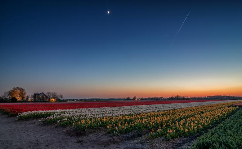 Bollenstreek by night