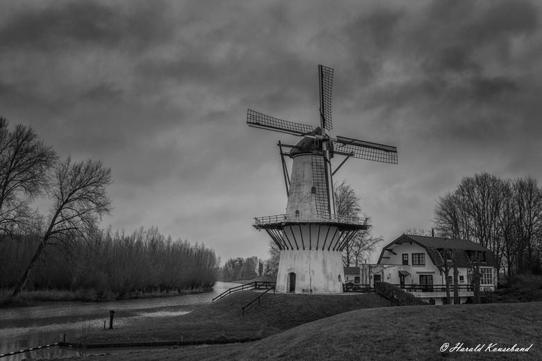 Molen de Vlinder  - De molen De Vlinder is een in 1913 langs de Linge gebouwde windmolen op de plaats van de afgebrande wipkorenmolen. De molen staat