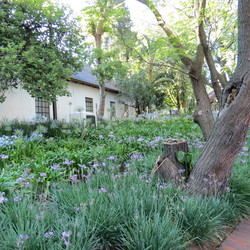 Tuin in Zuid Afrika