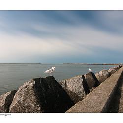 Wijk aan zee-10