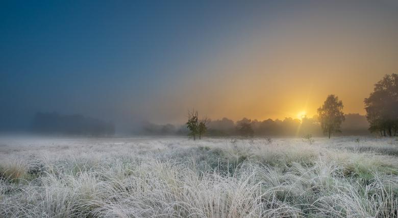 Mist in Hoogerheide ... - Mistige zonsopkomst in Hoogerheide ...