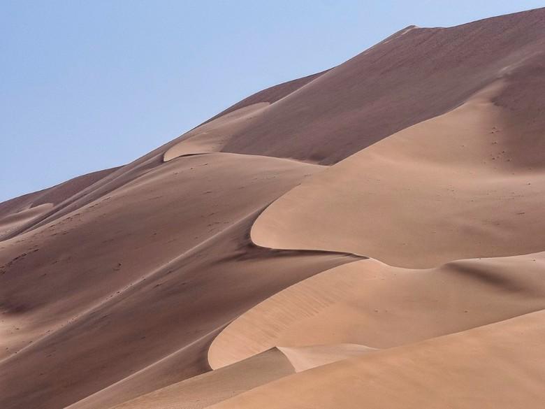 woestijn - De sierlijke vormen, gevormd door de wind in het zand.