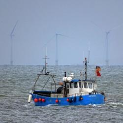 Garnalenvissers bij IJmuiden