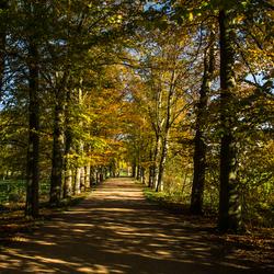 Herfst bij Schaloen, Valkenburg