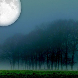 Full moon and groundfog.