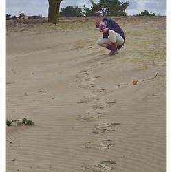 footprints of an artist...