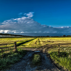 HDR weiland