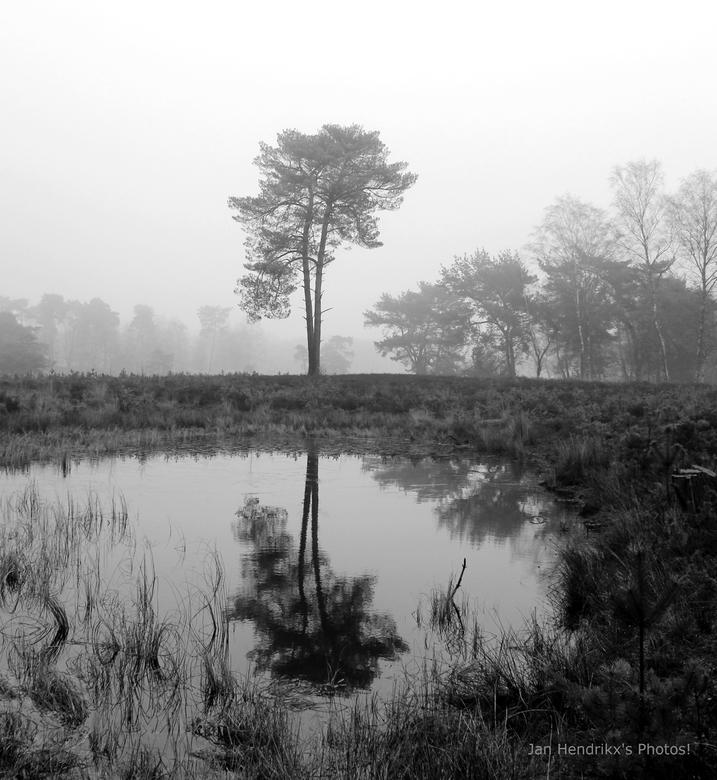 Foggy Mirror