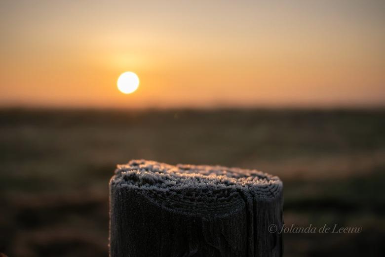 Rijp  - De tijd smelt langzaam weg onder de warmte van de opkomende zon