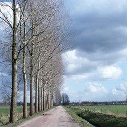 oosterhof-weg