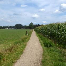 Landschap Oldebroek