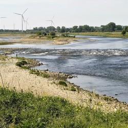 Lage waterstand Maas