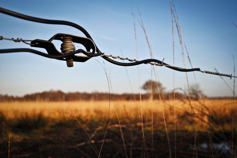 Stilte in de Peel - Deze foto is gemaakt op een zonnige dag in het najaar. Tevreden met het resultaat!