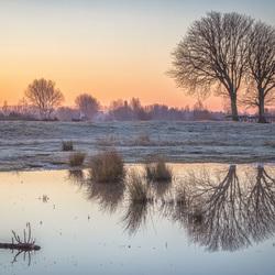 Mirrored Dawn