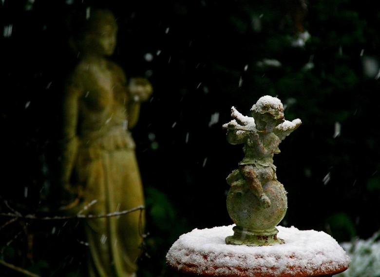Winters beeld