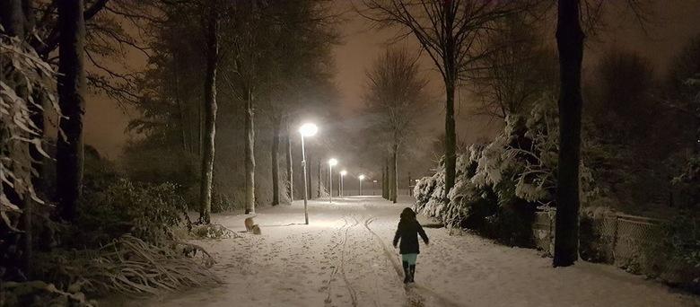 wintersfeer wandeling - Een fijne wandeling samen met dochterlief en de hondjes. De kleur van de lucht en de sneeuw viel prachtig samen. De foto is on