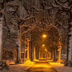 Winter Wonderland in Gorinchem