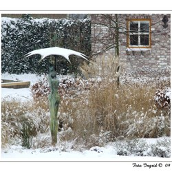 koude paraplu liefde???
