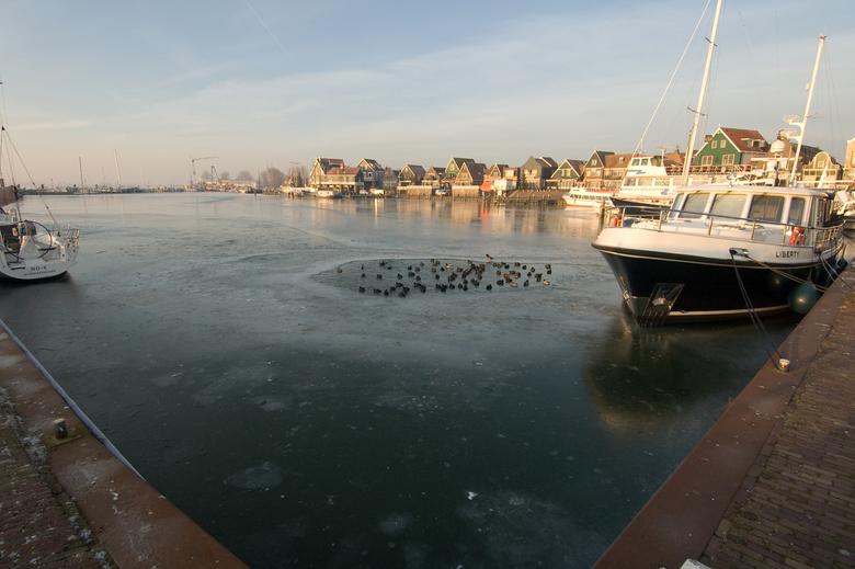 havendijkje volendam -