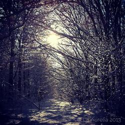 Narnia World